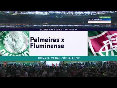 Palmeiras 3 x 0 Fluminense Melhores Momentos|14/11/2018|