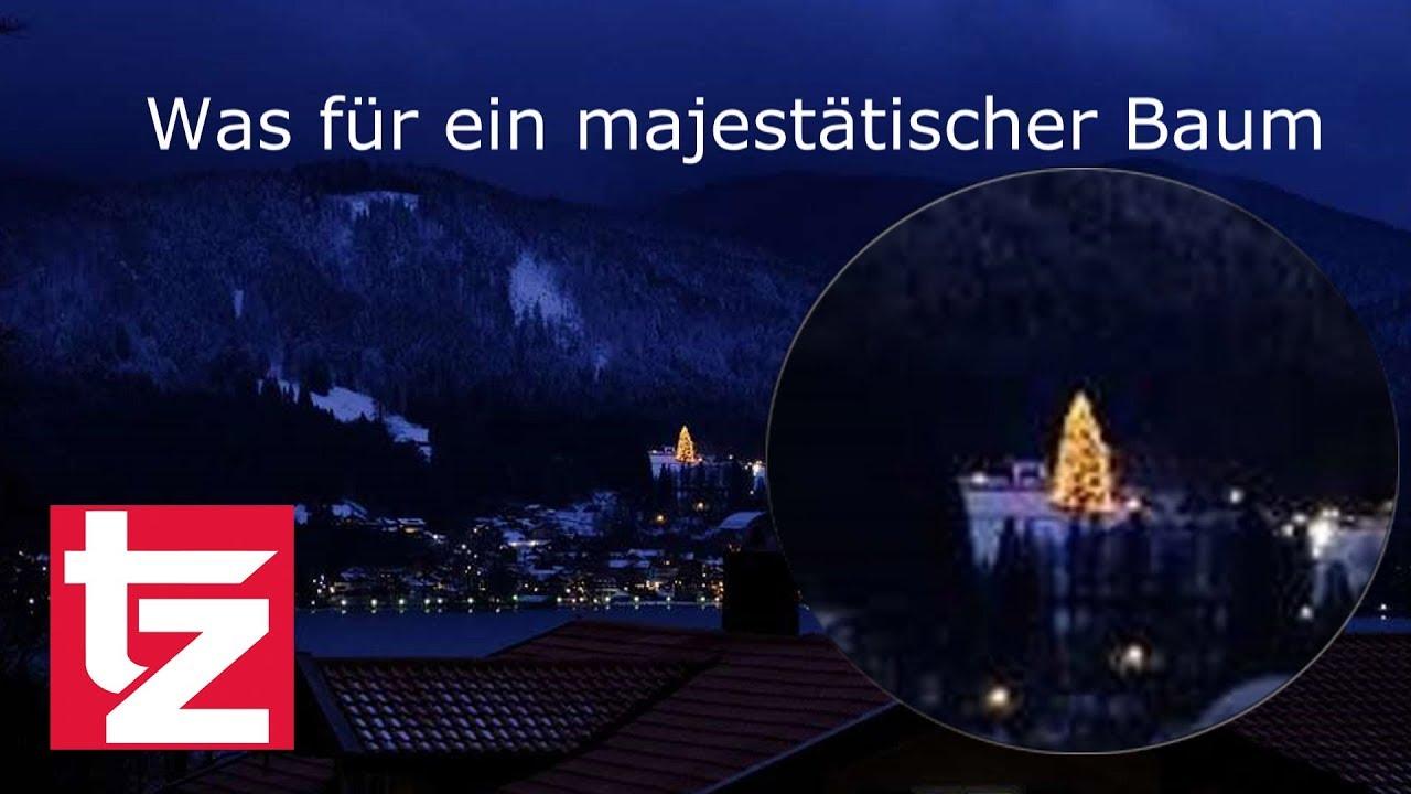 Fc Bayern Tannenbaum.Uli Hoeneß Sein Weihnachtsbaum Ist Der Größte Am See