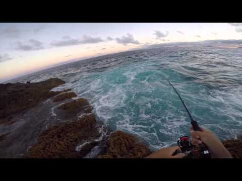 Extreme Fishing Canary Islands Tuna Time