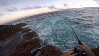 Extreme Fishing Canary Islands Tuna Time