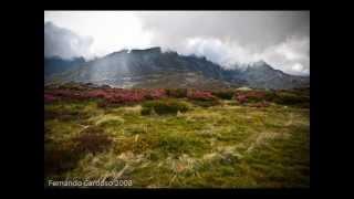 Portuguese Bagpipes/ Gaita Portuguesa - A saia da Carolina *Celtic Music*