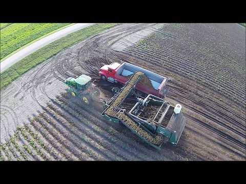 Potato Harvest in North Dakota Aerial Video (long version)