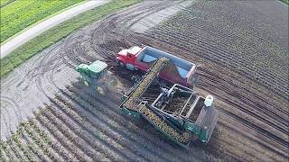 Potato Harvest in North Dakota Aerial Video (long version)