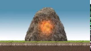 18 Days Compost - Permaculture Soils 2