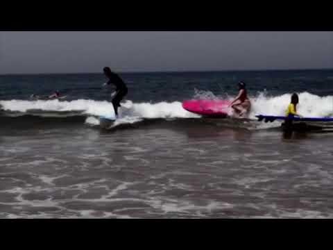 • Surfing Jams •  ☀️🌊