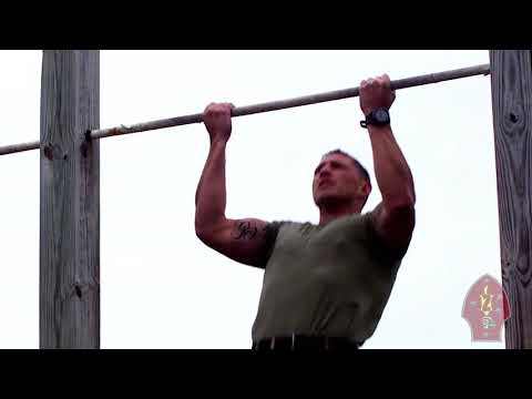 2nd Marine Division Force Fitness Pull-Ups