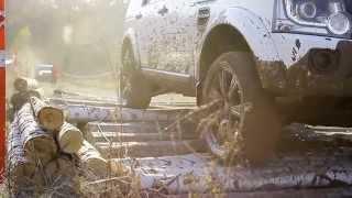 Презентация автомобиля, Jaguar Land Rover Day в Воронеже, от компании Event