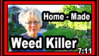 Home-Made Weed Killer - Wisconsin Garden Video Blog 512
