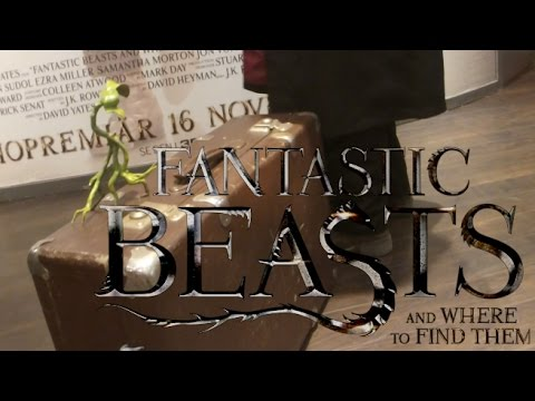 Fantastic Beasts and Where to Find Them - MOVIE PREMIERE