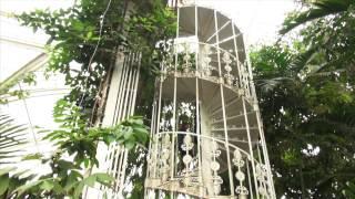 Palm House Kew garden