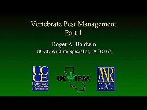 Vertebrate Pests Part 1