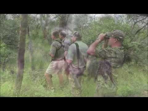 Elephant hunting with Carlo Engelbrecht Safaris in South Africa