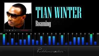 Tian Winter - Roaming [Soca 2013]