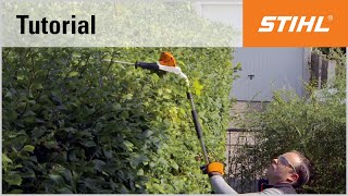 Cordless long-reach hedge trimmer cutting technique: overhead cutting with an angled cutter bar