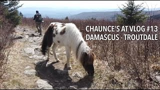 Chaunce's AT Vlog #13: Damascus - Troutdale