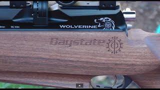 ACCURACY - Daystate Wolverine B - 5 Shot Group 49 Yards - 10 Shot Air Rifle