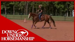 Clinton Anderson: Perfecting the Posse, Part 1  Downunder Horsemanship