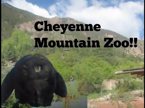 Chester's Travel Blog: Cheyenne Mountain Zoo