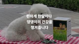 댕댕이 장수비결_올앤펫 새싹보리 정기구독 이벤트중(21…
