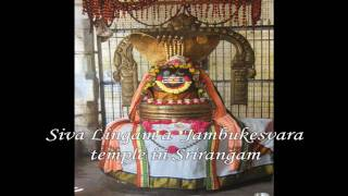 Sri Rudrashtakam - Slow Version by Ramesh Bhai Oza {HD }