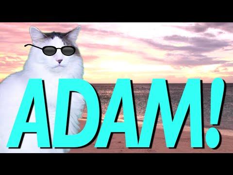 HAPPY BIRTHDAY ADAM!  EPIC CAT Happy Birthday Song