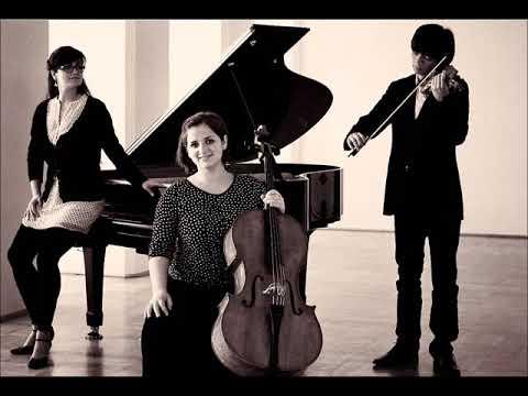 L. van Beethoven - Geister Trio op. 70 1st mvt. (Quasi Trio LIVE!)