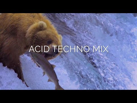 ACID TECHNO MIX (Saumon Dj set)