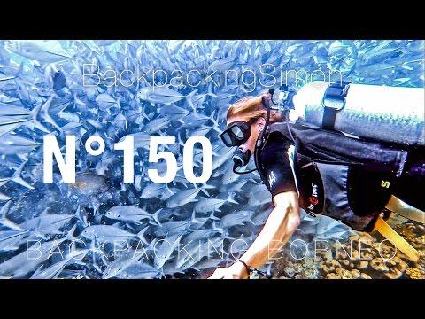 Geilster Tauchgang meines Lebens Sipadan Island Borneo / Weltreise Vlog / Backpacking #150