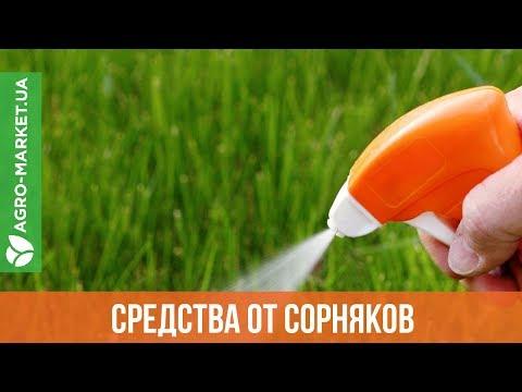 Лучшие средства от сорняков | Гербициды | Agro-Market.ua