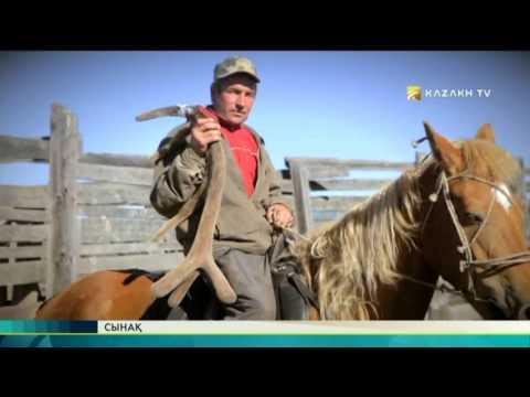Сынақ №16 (24.07.2017) - Kazakh TV