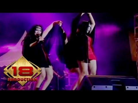 Trio Kalong - Aku Bukan Bang Toyib (Live Konser Belitang Sumatra Selatan 7 Februari 2014)