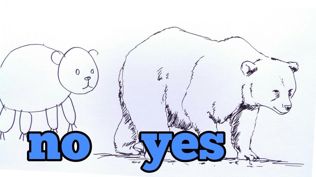 How To Draw Bear Cara Menggambar Beruang