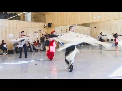 castro-romero-flamenco,-reportaje-canal-sur---buscando-cervantes