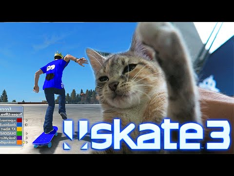 Cat Plays Skate 3