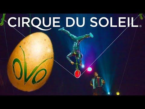 CIRQUE DU SOLEIL OVO Tightrope Balancing act HD 2017