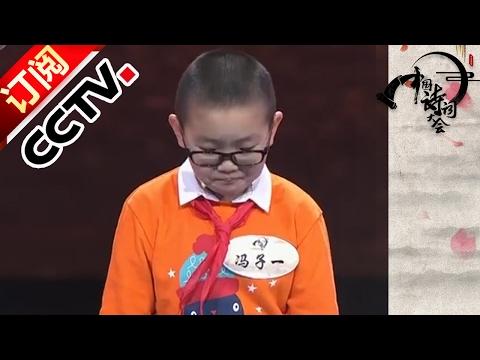 《中国诗词大会(第二季)》精编版 20170213 诗词达人汇聚北京并肩作战绽放芳华 | CCTV