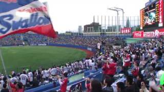 2010 Tokyo Yakult Swallows Starting Lineup @ Jingu Stadium
