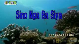 Sarah Geronimo - Sino nga ba siya (Karaoke/Lyrics/Instrumental)