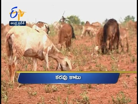 10 AM | Ghantaravam | News Headlines | 19th November 2018 | ETV Andhra Pradesh