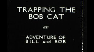 Adventures of Bill and Bob,Trapping the Bobcat