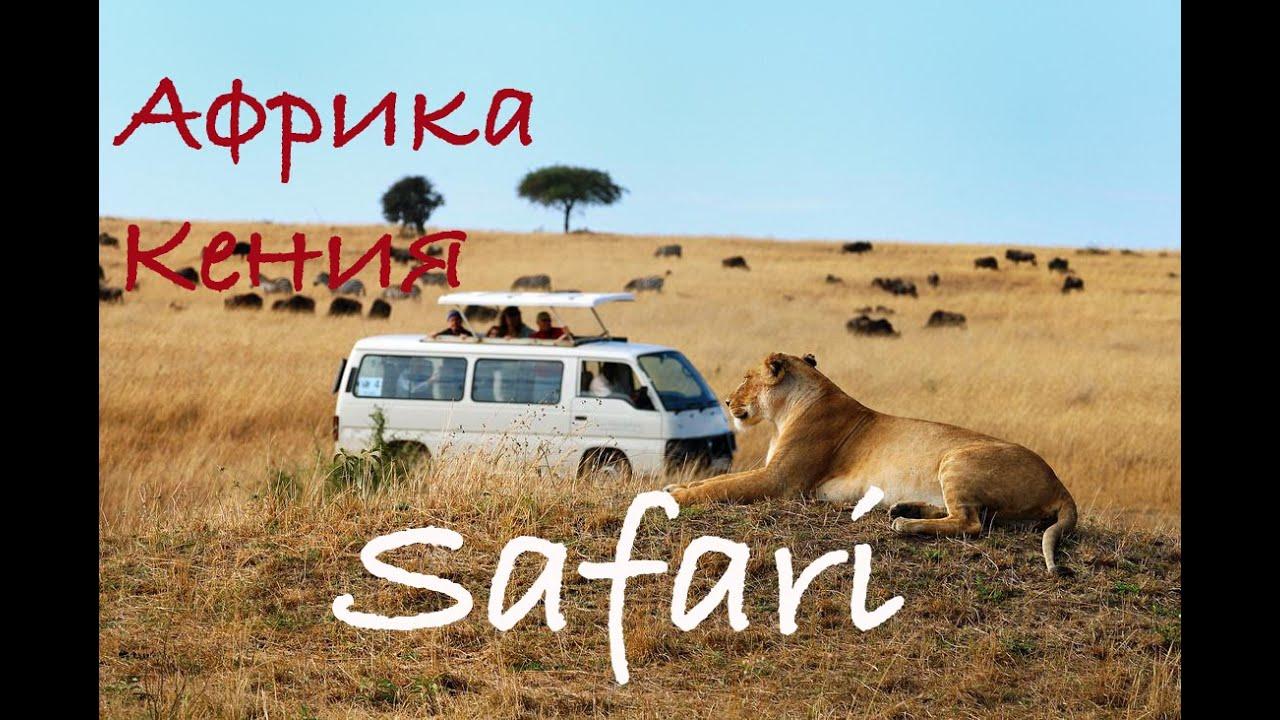Сафари в Кении. Момбаса. Африка.