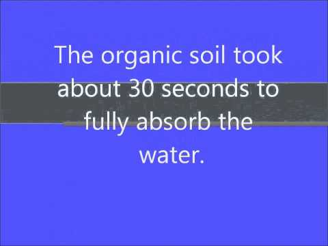 Organic VS Inorganic Soil