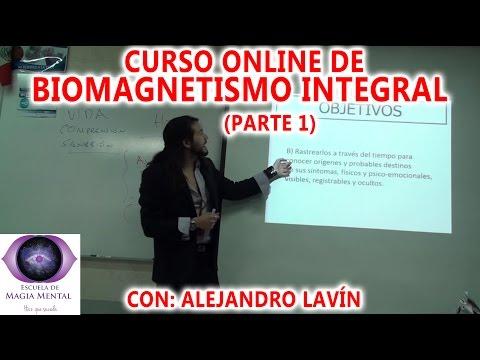 Homeóstasis, filosofía holística y Biomagnetismo - Alejandro Lavín