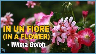 Wilma Goich - In un Fiore (1966) YouTube Videos