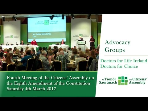 Advocacy Groups and Representative Organisations: Session 1 - Citizens' Assembly (March 5 2017)