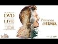 Michel Teló - Promessa Quebrada  (Guias do DVD