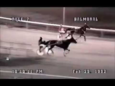 1992 Balmoral Park SILENT WHISPER Gerry Longo