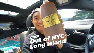 疫情下「衝出紐約...市」長島農場一日遊 試試有機__物 好好味嘅藍莓批 Briermere Farms, Long Island with Blueberry Cream Pie