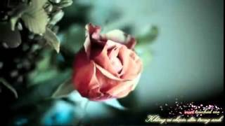 Vietsub Kara You Are The Love Of My Life   George Benson ft Roberta Flack