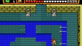 Neutopia 2 (TG-16 Zelda 1 type game)